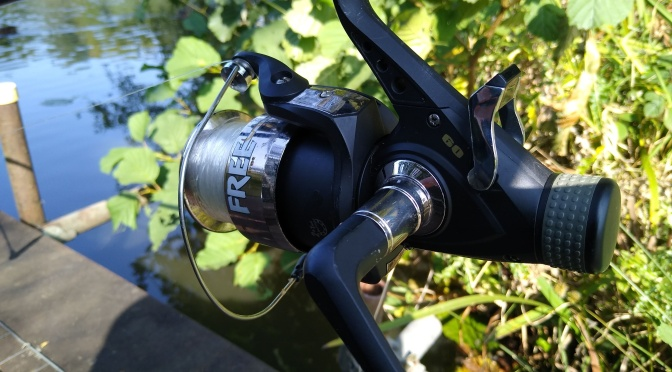 Carp fishing on Manor lake Tingrith